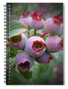 Berry Unripe Spiral Notebook