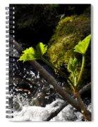 Beside The Waterfall Spiral Notebook