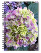 Beter Bloom Late Then Never Spiral Notebook