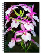 'betty' Orchid Spiral Notebook