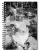 Between Black And White-12 Spiral Notebook