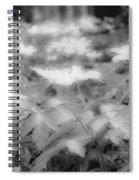 Between Black And White-14 Spiral Notebook