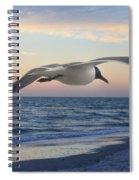 Between Spiral Notebook