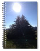 Between These Trees Spiral Notebook