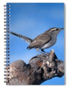 Bewicks Wren Spiral Notebook