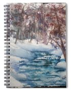 Beyond The Pond Spiral Notebook