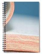 Bibliophile Spiral Notebook