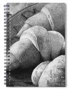 Bien Manger #1 Spiral Notebook