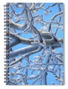 Bifurcations In White And Blue Spiral Notebook