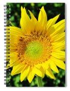 Big And Beautiful Spiral Notebook