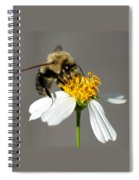 Big Bee Spiral Notebook