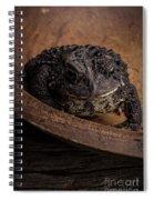 Big Black Toad Spiral Notebook