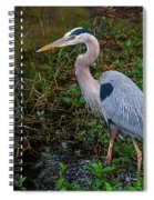 Big Blue And The Ibis Spiral Notebook