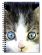 Big Blue Eyes Spiral Notebook