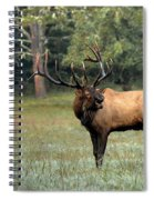 Big Boy Number Sixty-seven Another Year Older Spiral Notebook