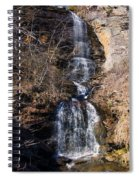 Big Bradley Falls 2 Spiral Notebook