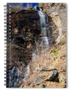 Big Bradley Falls 6 Spiral Notebook