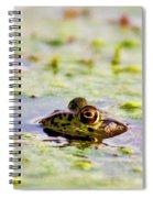 Big Bubba Spiral Notebook