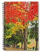 Big Colorful Sleep Spiral Notebook