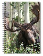 Big Daddy The Moose 3 Spiral Notebook