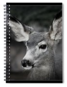 Big Ears Spiral Notebook