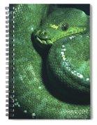 Big Green Eating Machine Spiral Notebook