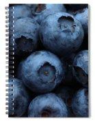 Big Hurts Spiral Notebook