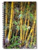 Big Island Bamboo Spiral Notebook