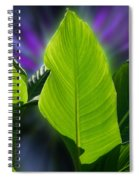 Big Leaves Spiral Notebook