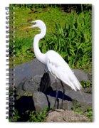 Big Mouth Spiral Notebook