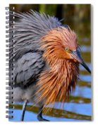 Big Red All Fuzzed Out Spiral Notebook