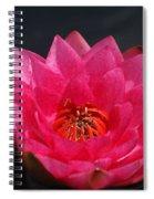 Big Red Glory Spiral Notebook