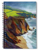Big Sur 1 Spiral Notebook