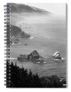 Big Sur 4 Spiral Notebook