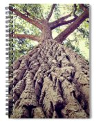 Big Tree Bark Spiral Notebook