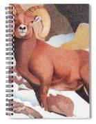 Bighorn Sheep Winter Spiral Notebook