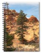 Bighorn Sheep On A Ridge Spiral Notebook