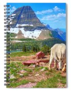 Billy Bearhat Spiral Notebook