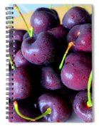 Bing Cherries Spiral Notebook