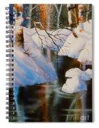 Birch At Russian Jack Park Spiral Notebook