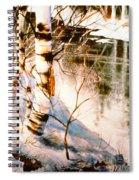 Birch By Stream Spiral Notebook