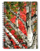 Birch Eclipsing Maple Spiral Notebook
