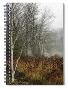 Birch In Winter Spiral Notebook