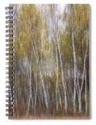 Aspen Trees At Lake Maria State Park Minnesota Spiral Notebook
