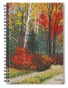 Birch Trail Spiral Notebook