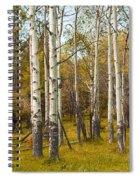 Birch Tree Grove No. 0126 Spiral Notebook