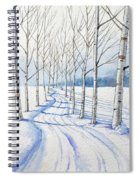 Birch Trees Along The Curvy Road Spiral Notebook