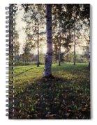 Birch Trees, Imatra, Finland Spiral Notebook