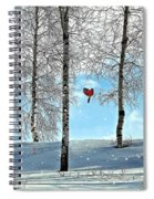 Birch Trees Spiral Notebook