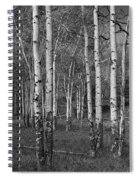 Birch Trees No.0148 Spiral Notebook